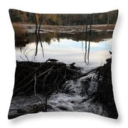 Calm Photo Of Water Flowing Throw Pillow