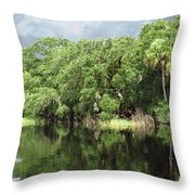 Calm River Reflections Throw Pillow