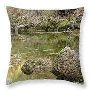 Calm Waters Scenery Throw Pillow