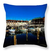 Calm Waters V2 Throw Pillow