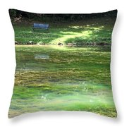 Calming Solitude Throw Pillow by Valeria Donaldson