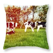 Calves In Spring Field Throw Pillow