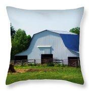 Calvin Road Barn Throw Pillow by Cricket Hackmann
