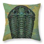 Calymene Niagarensis Throw Pillow