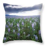 Camas Marsh 2 Throw Pillow