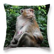 Cambodia Monkeys 2 Throw Pillow