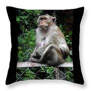 Cambodia Monkeys 3 Throw Pillow