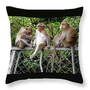 Cambodia Monkeys 7 Throw Pillow