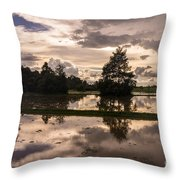 Cambodian Countryside Rice Fields Reflection Throw Pillow