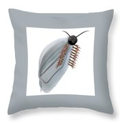 Cambrian Pikaia Fish Throw Pillow