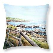 Cambrian Shores Throw Pillow