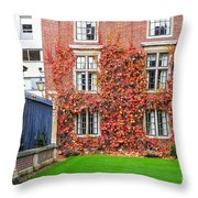 Cambridge 2 Throw Pillow
