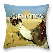 Camel And The Great Pyramids Of Giza - Egypt Throw Pillow