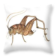 Camel Cricket Throw Pillow