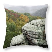 Camel Rock Close Up Throw Pillow