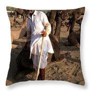 Camel Trader Pushkar Throw Pillow