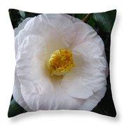 Camellia 1 Throw Pillow
