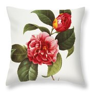 Camellia, 1833 Throw Pillow by Granger