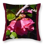 Camellia Light And Bud Throw Pillow