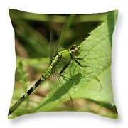 Cameo Green Dragonfly Throw Pillow