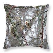 Camera Shy Grey Squirrel Throw Pillow
