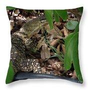Camouflage Artist  Throw Pillow