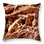 Camouflaged  Sun-drenched  Climb Throw Pillow