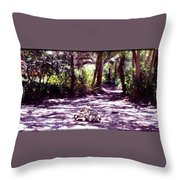 Camp Fire Past Throw Pillow