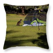 Camping With Swamp Wallaby Throw Pillow