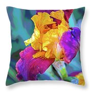 Can-can Throw Pillow