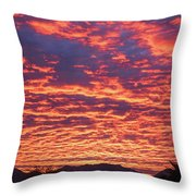 Can You Believe This One Throw Pillow