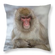 Can You Help? Throw Pillow