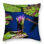 Can You Sit For Awhile Throw Pillow