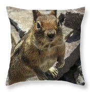 Can You Spare Me Some Food? Throw Pillow