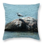 Cana Island Wi Throw Pillow