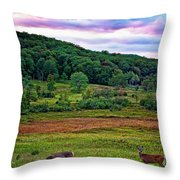 Canaan Valley Evening Throw Pillow