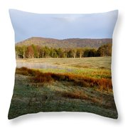 Canaan Valley State Park Throw Pillow