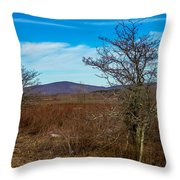 Canaan Valley West Virginia Throw Pillow