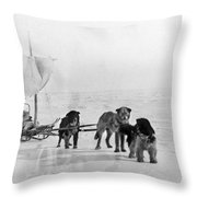 Canada: Dogsledding Throw Pillow