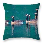 Canada Geese 2 Throw Pillow