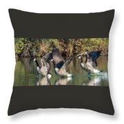 Canada Geese 5659-092217-1cr-p Throw Pillow