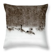 Canada Geese Feeding In Winter Throw Pillow