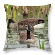 Canada Geese In Pond Throw Pillow