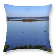 Canada Geese On Yellowstone Lake Throw Pillow