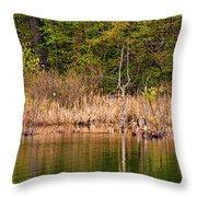 Canada Goose Couple Throw Pillow