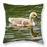 Canada Goose Gosling Throw Pillow