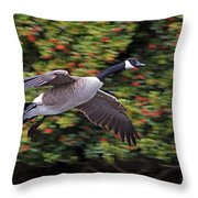 Canada Goose Landing Throw Pillow