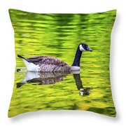 Canada Goose Swimming In A Pond Throw Pillow