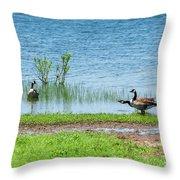 Canadian Geese - Wichita Mountains - Oklahoma Throw Pillow