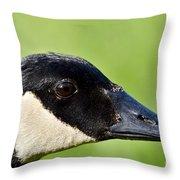 Canadian Goose Portrait Throw Pillow